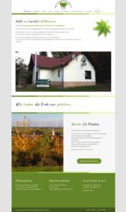 naturfreunde-flonheim.de